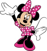 ​Minnie Mouse Party Package